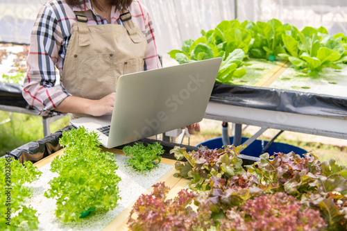 Hydroponic female farmer collecting vegetable growth information and using laptop for upload data to customer for online trading internet for sale Wallpaper Mural