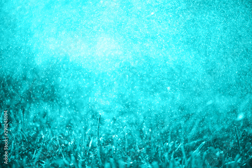Foto auf Leinwand Turkis Abstract colorful toned grass in drops of dew. Bright grass and drops of morning fresh dew. Magic background. Alien mythical landscape of light blue.