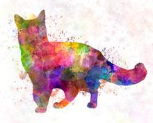 Somali Cat In Watercolor