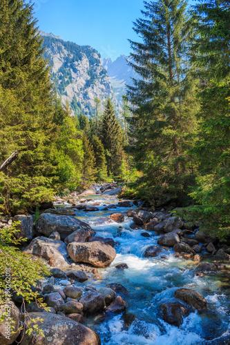 Vista delle montagne in Val di Mello, Italia Canvas Print