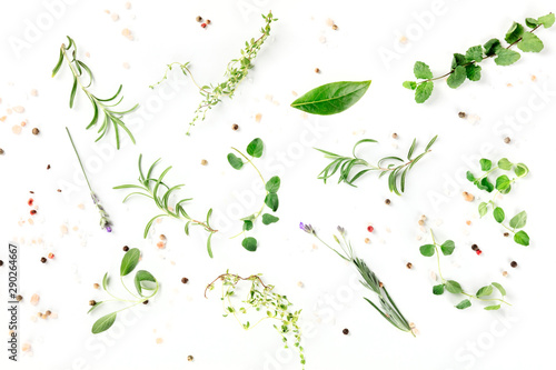 Obraz Culinary herbs and spices, shot from the top on a white background, cooking pattern - fototapety do salonu