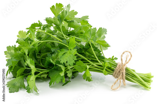 Fotomural  bunch fresh parsley isolated on white background
