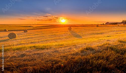 Spoed Fotobehang Oranje eclat sunset over wheat field
