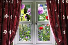 Window View Onto Wild Summer Garden