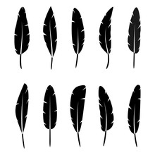 Collection Of Vector Black Sil...
