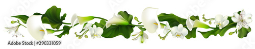 Fototapeta Flowers. Floral background. Orchids. Calla. White. Green leaves. Horizontal pattern. Lilies. obraz