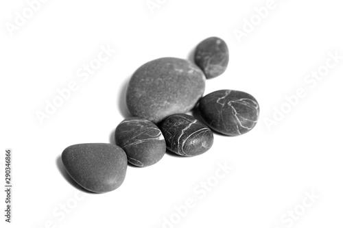 Fotografía  Scattered sea pebbles