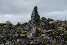 Green Moss On Black Volcanic Rocks