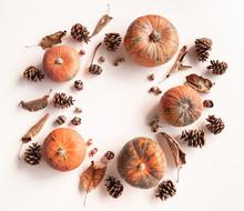 Pumpkins, Pine Cones, Dry Leav...