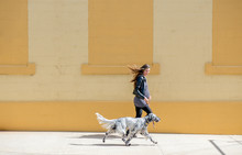 Pregnant Woman Walks Her Dog In The City