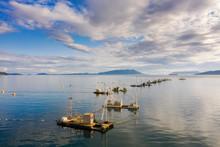 Reefnet Salmon Fishing Boats Off Lummi Island, Washington. Wild Pacific Salmon Reefnet Fishing Is An Historical Pacific Northwest Fishing Method- The Oldest Known Salmon Net Fishery In The World.