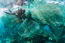 Scuba Diver Removing Drift Net