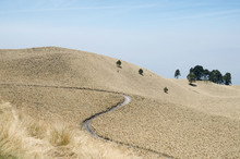 Pathway In The Dry Grassland H...