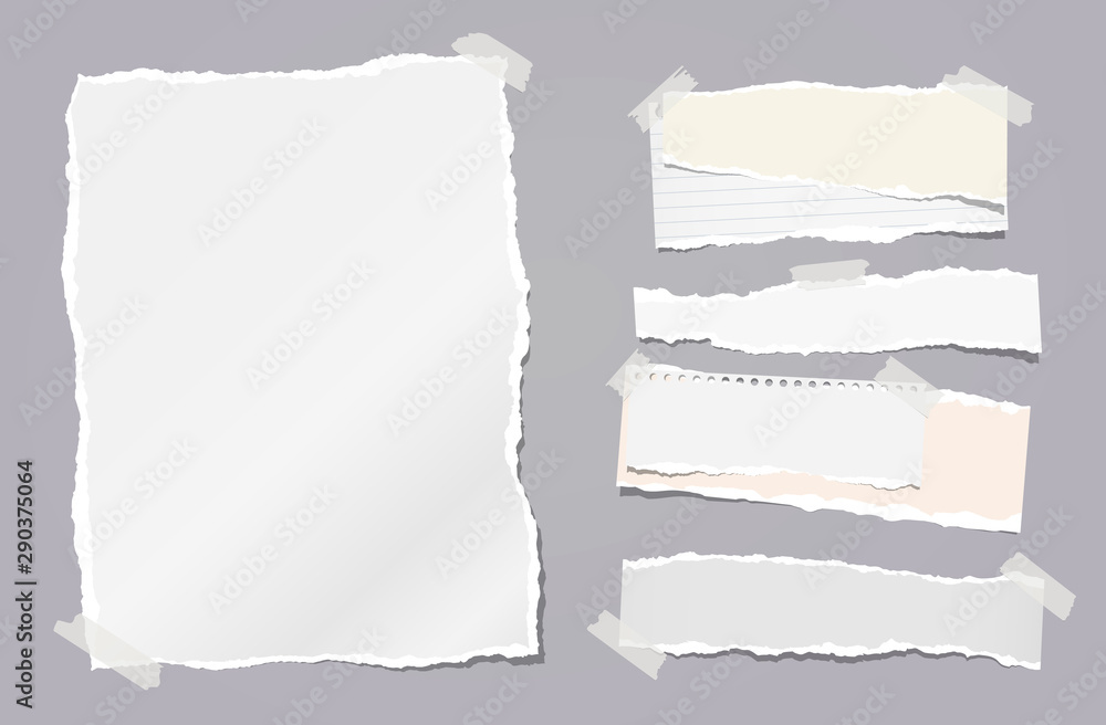 Fototapety, obrazy: Torn white note, notebook paper strips stuck with sticky tape on dark grey background. Vector illustration