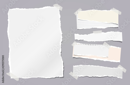 Fotografía  Torn white note, notebook paper strips stuck with sticky tape on dark grey background