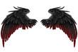 canvas print picture - dark Angel Wings