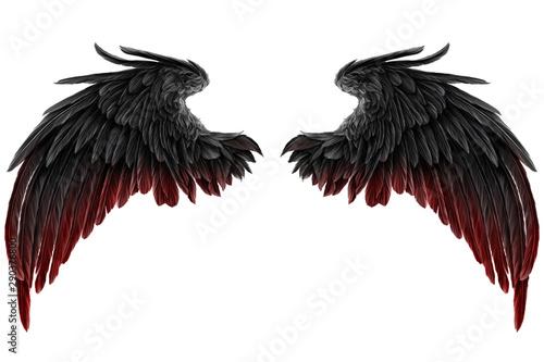 Fototapeta dark Angel Wings obraz