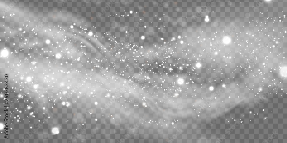Fototapeta Falling Christmas Shining snow, fog and wind isolated on transparent background. heavy snowfall, snowflakes in different shapes and forms. Winter Holidays Storm with snowflakes flying in the air