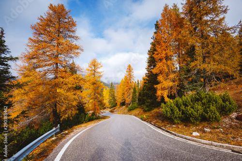 Fototapeta  Stunning image of the alpine road