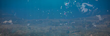 Plastic Pollution In Ocean Water, Microplastics In The Current