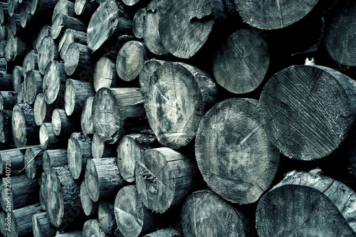 Printed kitchen splashbacks Firewood texture Tree rings background.