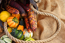 Decorative Gourds And Corn