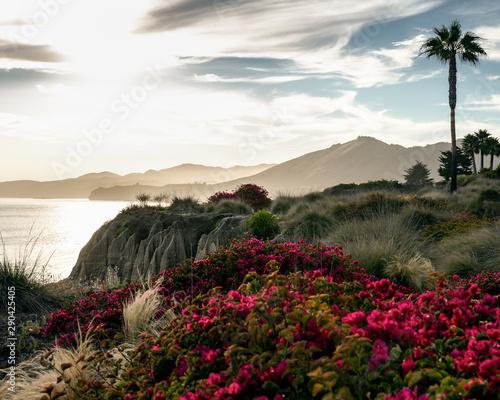 Fototapeta vue de la côte ouest américaine