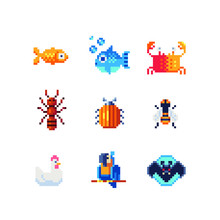 Different Tropical Animals Character And Insects Set. Pixel Art 80s Style Icons. Element Design For Stickers, Logo, Embroidery And Mobile App. Video Game Assets Sprite Sheet. Isolated Vector.