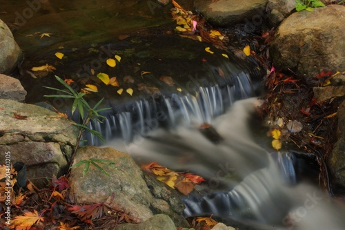 Foto auf Gartenposter Forest river welcome to the peaceful bamboo stream with fall colors