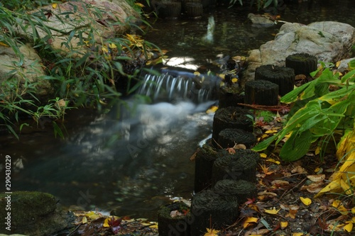 Foto op Plexiglas Bos rivier welcome to the peaceful bamboo stream with fall colors