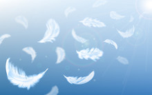 White Feathers Fly In Air On Blue Sky Background With Sun Beams And Lens Flare, Realistic Vector Illustration. Fluffy Soft Feathers Float In Air, Lightness And Innocence Poster