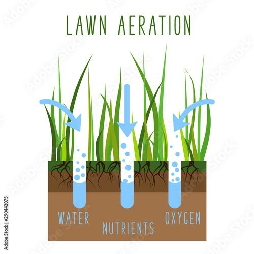 Lawn Care Vector Canvas Print