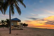 Palm Trees In Ocean Beach At Sunrise In Florida Keys