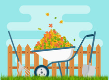 White Wheelbarrow With A Bunch Of Leaves