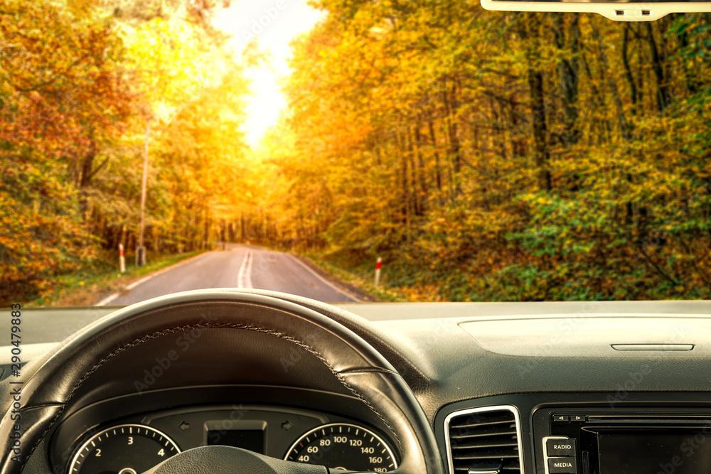 Fototapeta Car interior and autumn road in forest