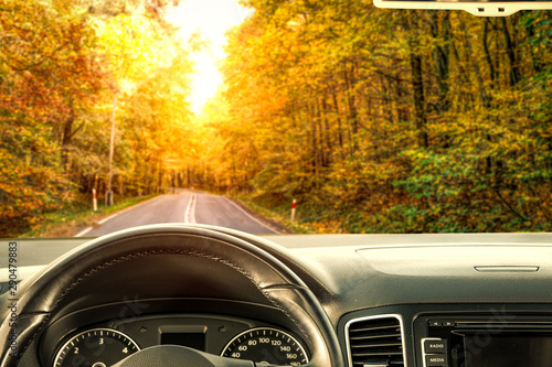 Cadres-photo bureau Vintage voitures Car interior and autumn road in forest
