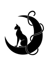 Graceful And Elegant Cat Sitti...