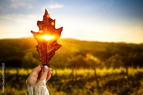 Foto  Autumn leaf and woman hand with sunset time.