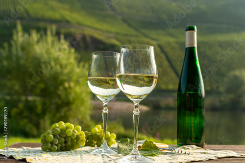 Fotografie, Tablou  Famous German quality white wine riesling, produced in Mosel wine regio from whi