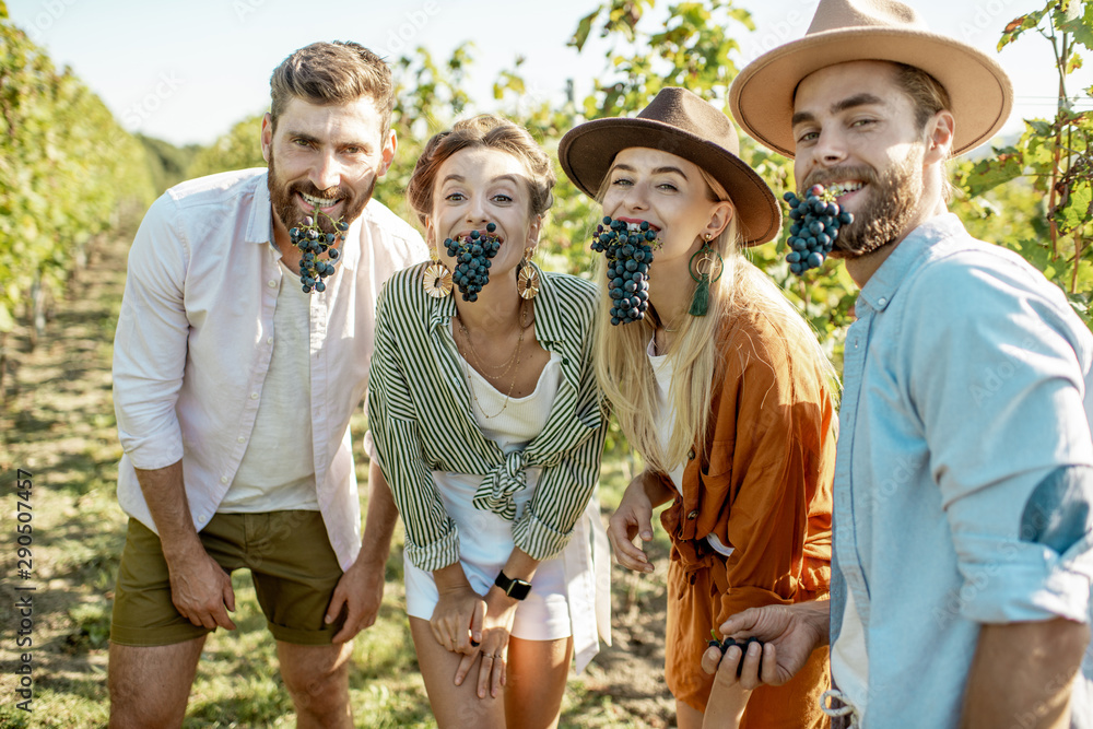 Fototapety, obrazy: Portrait of a happy friends tasting grapes on the vineyard, having fun together at the winery on a sunny morning