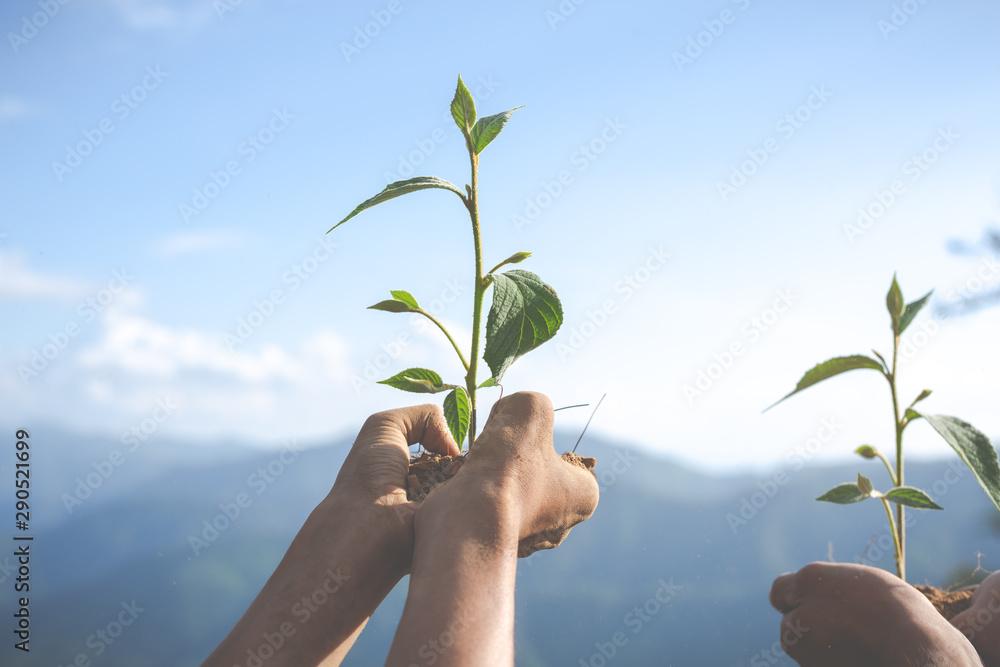 Fototapety, obrazy: Concept of environmental conservation in the garden for children.