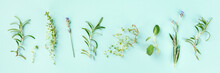 Culinary Aromatic Herbs On A Teal Blue Background. Rosemary, Thyme, Lavender, Sage, Shot From Above, A Flat Lay Panorama