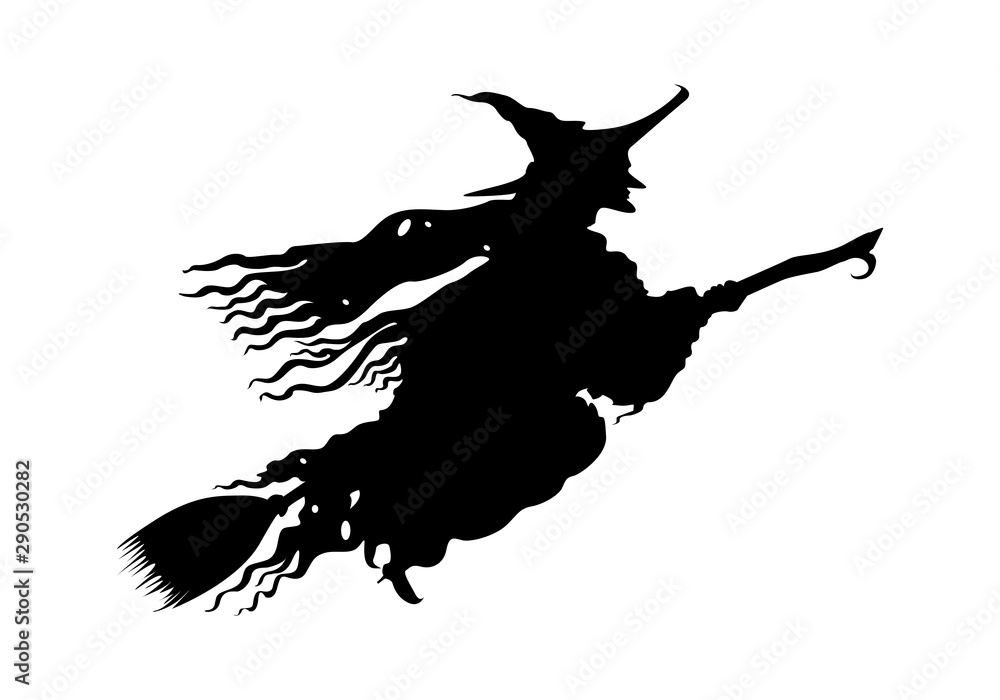 Fototapety, obrazy: witch flying on a broomstick