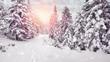 Leinwanddruck Bild - winter landscape - lots of snow in the walt