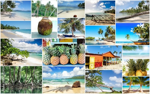 fototapeta na ścianę Collage from views of the Caribbean beaches, amazing landscape of Samana, Dominican Republic, with shells, palm trees, a Caribbean house, flowers, ocean, waves, sky, sun and clouds