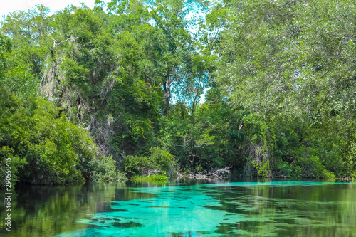Fotomural  Blue Weeki Wachee Spings River