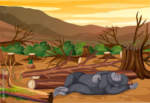 Photo sur Aluminium Jeunes enfants Scene with dying monkey and deforestation