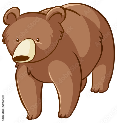 Poster Kids Brown bear on white background