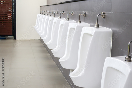 Cuadros en Lienzo White urinals in men toilet