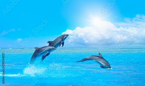 Naklejki delfiny  grupa-delfinow-skaczacych-na-wodzie